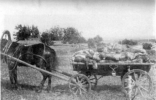 Kharkiv - Carcóvia - Cadáveres empilhados em uma carroça